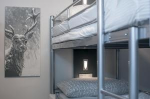 Bed in a 6 bed mixed dormitory with ensuite