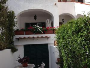 Casetta Ischia - AbcAlberghi.com