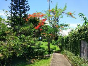 Gajah Mina Beach Resort (30 of 70)