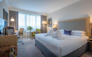 Clayton Hotel Burlington Road, Отели  Дублин - big - 5