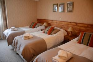Hotel Borde Lago, Hotely  Puerto Varas - big - 4