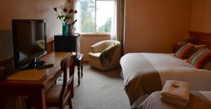 Hotel Borde Lago, Hotels  Puerto Varas - big - 8
