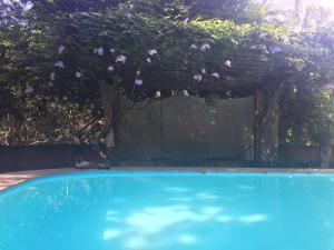 Recanto da Pipa Casas por Temporada, Prázdninové domy  Pipa - big - 21