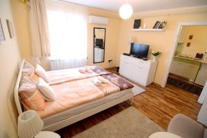 Singidunum apartment, Appartamenti  Belgrado - big - 10