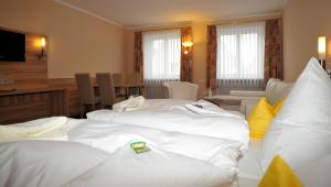 Posthotel Traube, Hotels  Donauwörth - big - 12