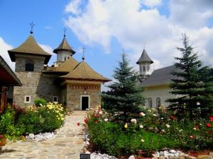 Pensiunea Madalina, Vendégházak  Putna - big - 45