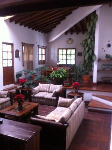 Tequisquiapan, Zona Centro, Дома для отпуска  Текискиапан - big - 9