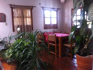 Tequisquiapan, Zona Centro, Дома для отпуска  Текискиапан - big - 7