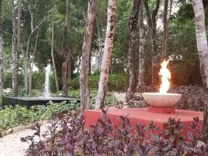 Luxury 2 Bedroom Bahia Principe Condo, Appartamenti  Akumal - big - 50