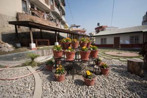 Earthkind Cottages, Мини-гостиницы  Bālāju - big - 33