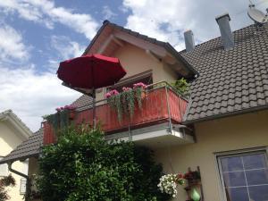 Ferienwohnung Haus Albsicht