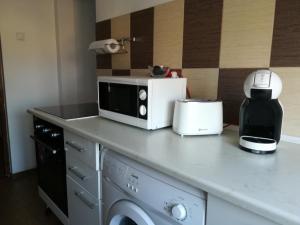 Sophia Apartment, Apartments  Iaşi - big - 6