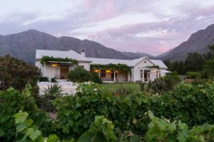 Cape Vue Country House, Pensionen  Franschhoek - big - 19