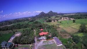 The Woodlands Villa