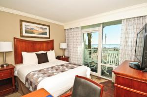 Queen Suite - Oceanfront Building