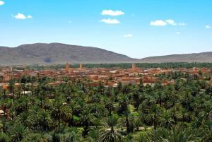 Residence Rosas, Pensionen  Ouarzazate - big - 26