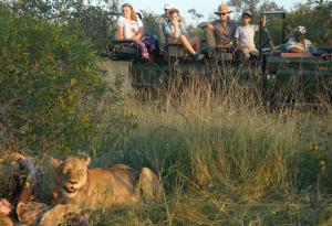 Pungwe Safari Camp, Chaty v prírode  Manyeleti Game Reserve - big - 9