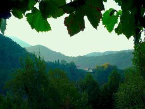 Casa Sittaro, Holiday homes  Grimacco - big - 17