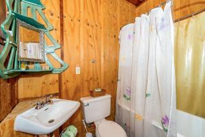 49 Atkins Loop Home Home, Holiday homes  Lake Junaluska - big - 15