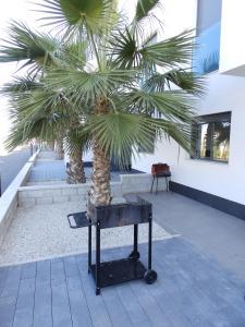 ALEGRIA ID19, Holiday homes  Playa Flamenca - big - 16