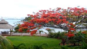 Casa Armonia, Holiday homes  Cancún - big - 11