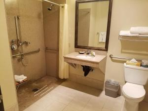Queen Room with Roll In Shower - Non smoking