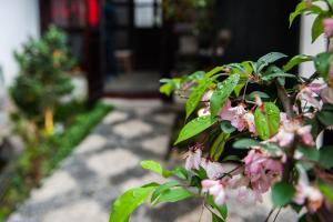 Tonglibanmu Xinyuan Guest House, Penziony  Suzhou - big - 54