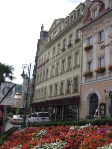 Apartment U Gejziru, Appartamenti  Karlovy Vary - big - 16