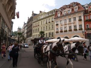 Apartment U Gejziru, Appartamenti  Karlovy Vary - big - 17