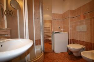 Apartment U Gejziru, Appartamenti  Karlovy Vary - big - 22