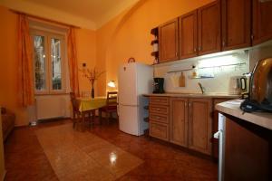 Apartment U Gejziru, Appartamenti  Karlovy Vary - big - 27