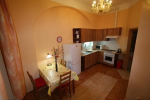 Apartment U Gejziru, Appartamenti  Karlovy Vary - big - 28