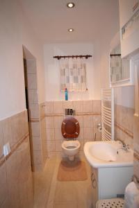 Apartment U Gejziru, Appartamenti  Karlovy Vary - big - 30