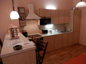 Apartment U Gejziru, Appartamenti  Karlovy Vary - big - 42