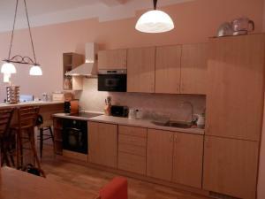 Apartment U Gejziru, Appartamenti  Karlovy Vary - big - 43