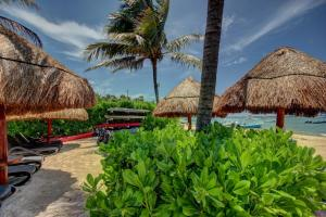 Gaia 2, Appartamenti  Playa del Carmen - big - 7