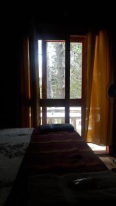La casa de los 10 pinos, Homestays  La Pedrera - big - 6