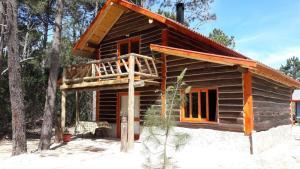 La casa de los 10 pinos, Homestays  La Pedrera - big - 1