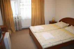 Korina Sky Hotel, Hotely  Bansko - big - 24