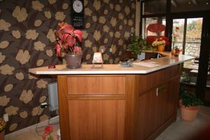 Korina Sky Hotel, Hotely  Bansko - big - 19