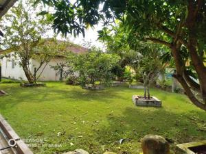 Bagan Lalang Homestay, Magánszobák  Kampong Jelutong - big - 25