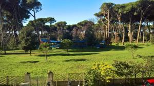 Casa della pineta - AbcAlberghi.com