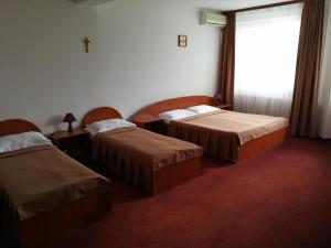 Hotel Lotus, Hotels  Arad - big - 10