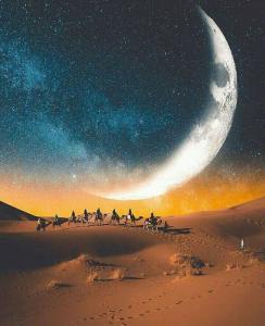 Riad Desert Camel, Hotels  Merzouga - big - 126