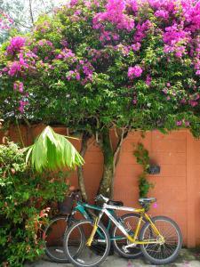 Casa Solhana., Case vacanze  Panajachel - big - 11