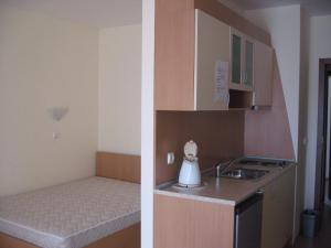 Chateau Aheloy, Apartmánové hotely  Aheloy - big - 62