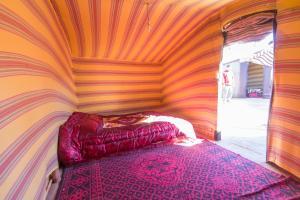 Camel Bivouac Merzouga, Campeggi di lusso  Merzouga - big - 22