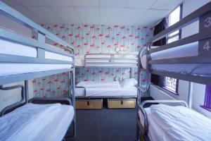 ドミトリールーム(6人部屋) 男女共用 二段ベッドのベッド1名分