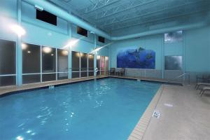 Tidewater 3013 - 1035714 Condo, Apartmány  Panama City Beach - big - 18