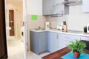 Top Spot Residence, Апартаменты  Краков - big - 4